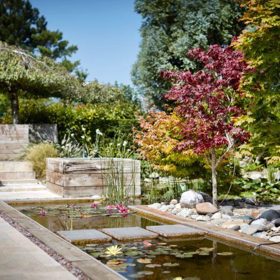 Bassin Jardiniste Concepteur