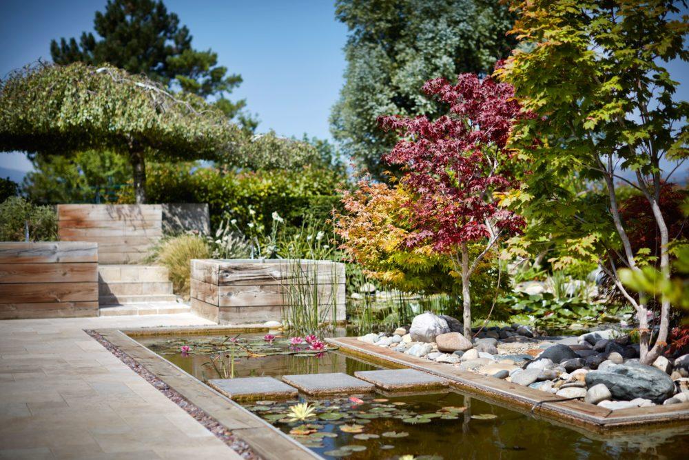 aménagement jardin bassin ardèche