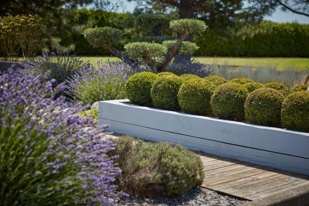 travaux entretien jardin cedric pierre paysage