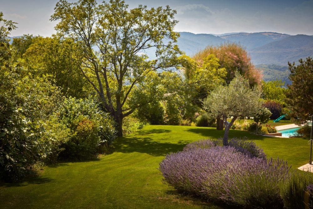 Le Jardin Traditionnel - Cédric Pierre Paysage