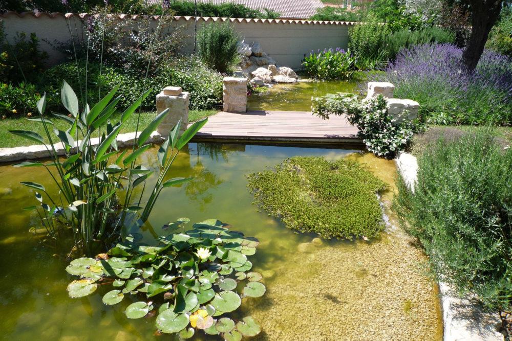 création bassin drôme ardèche - cédric pierre paysage