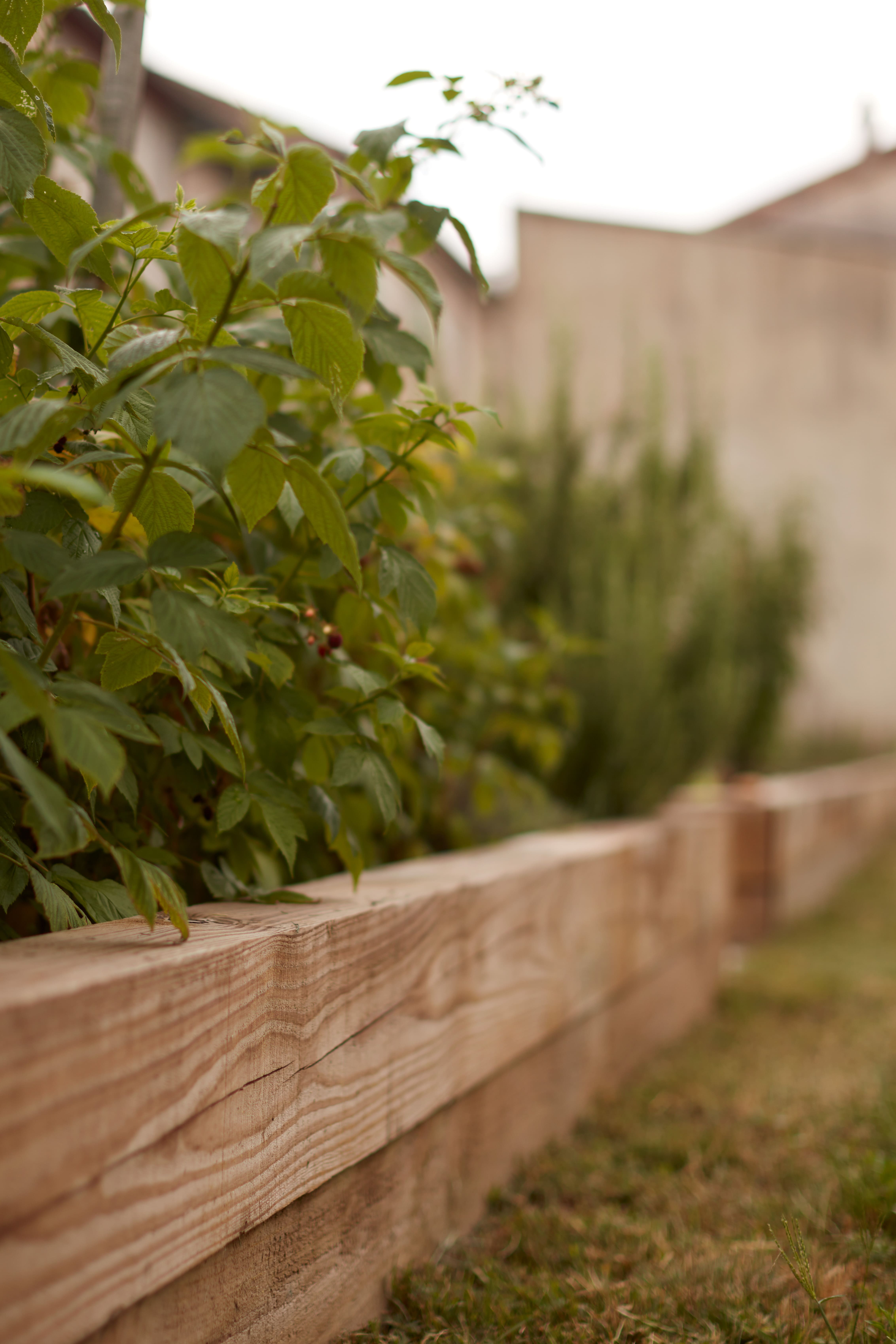 création potager jardin drôme